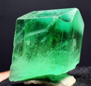 Green Kunzite var Hiddenite Crystal, Clear, Terminated
