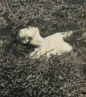 RAYMOND BOREL - Nude in Marsh Grasses