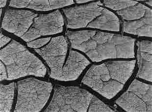 EDWARD WESTON - Cracked Earth, Borego Desert, 1938
