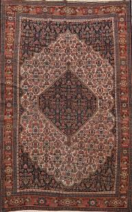 Pre-1900 Antique Senneh Vegetable Dye Persian Area Rug