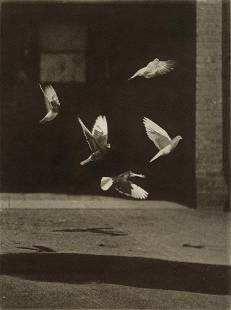 FRANCIS BLAKE - Pigeons in Flight, 1890