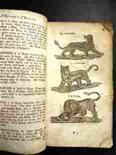 18th C English School Book Beats Birds Insects