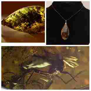 Baltic amber pendant silver inclusion insect Fly