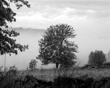 CATSKILL MOUNTAINS MORNING