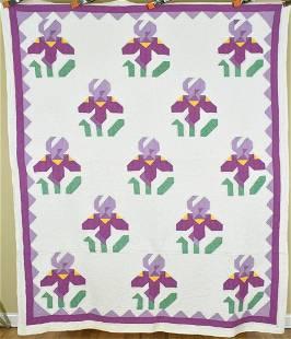 30's Iris Quilt, Rare Pieced Design