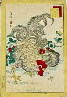 Sugakudo: Curly-feathered Chickens