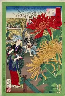 Ginko: Large Flowers, Chrysanthemums