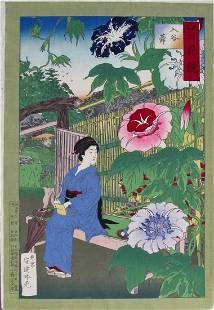 Ginko: Large Flowers, Petunias