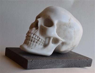 Human marble skull