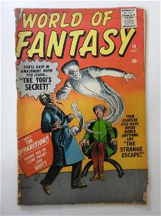 World of Fantasy #14