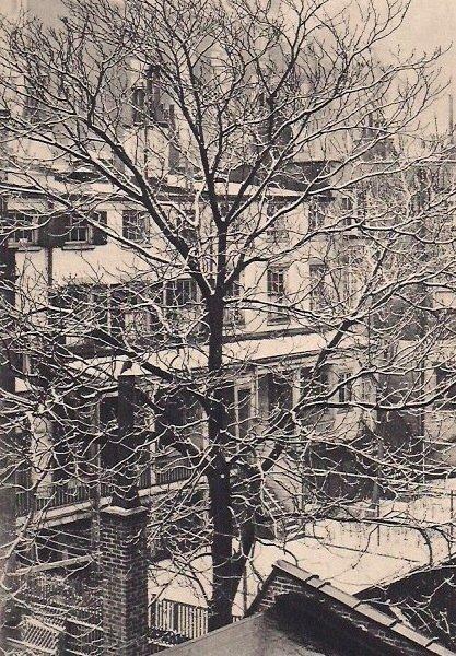 Marjorie Content: Winter