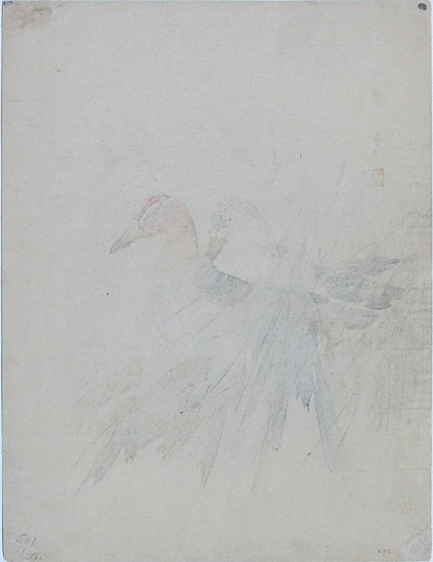 Watanabe Seitei - Ducks in Marsh Grass - 2