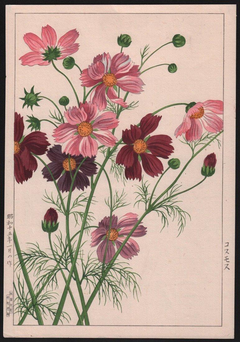 Nishimura Hodo - Red & Pink Cosmos