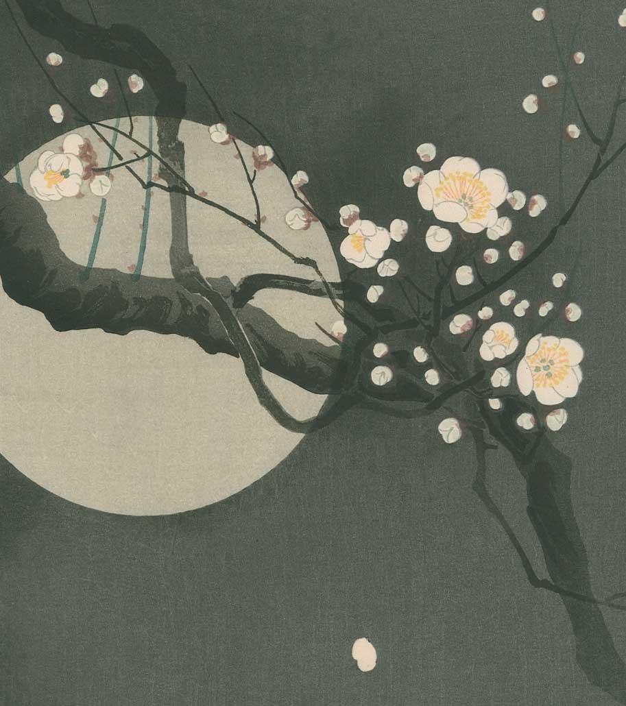 Ohara Koson - Full Moon and Blossoms 1920's - 2