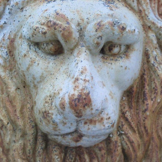 20th C Cast Iron Lion Head - 2
