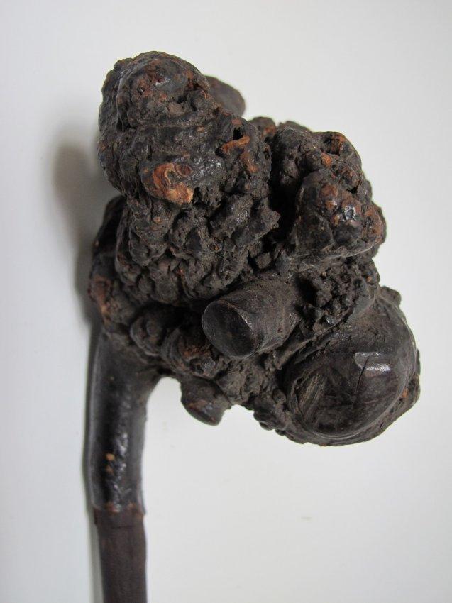 18th C Penobscot Root Cane - 3