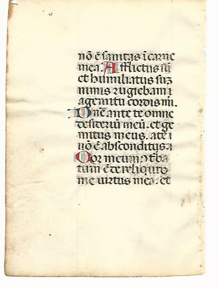 14th C Illuminated Manuscript Leaf on Vellum - 2