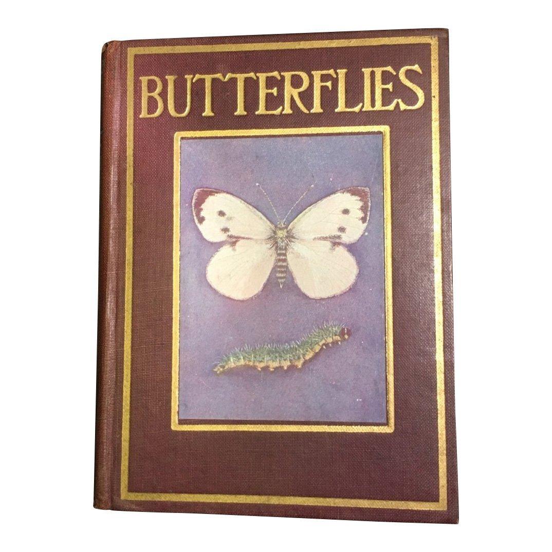 Butterflies and Moths by Janet Harvey Kelman, 1912