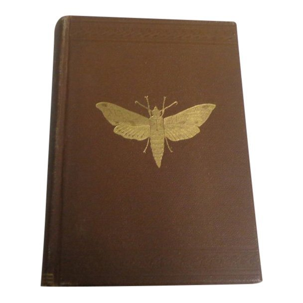 Insects Injurious to Vegetation by T. Harris, 1890