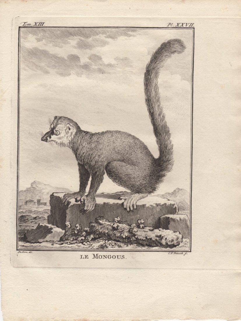Le Mongous, Jacques De Seve 1778-81