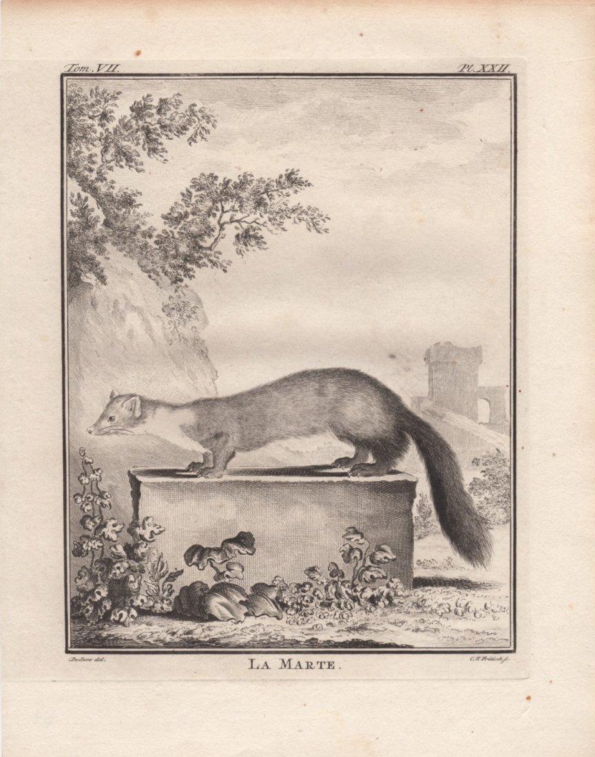 Le Marte, Jacques De Seve 1778-81