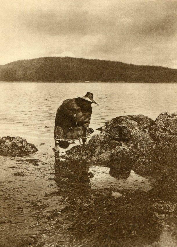 Edward S. Curtis: Gathering Abalones Nakoaktok