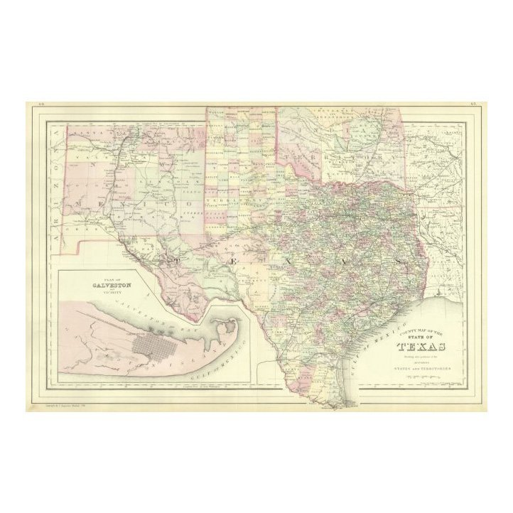 County Map of the State of Texas 1884