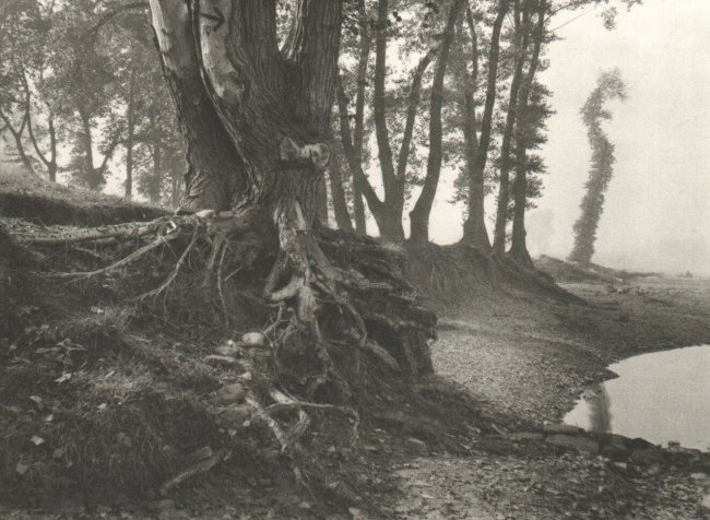 Josef Sudek: Troja Island