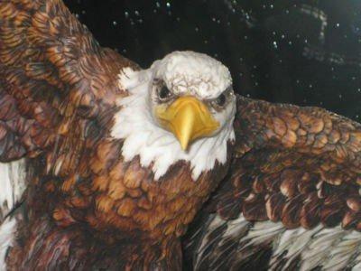 Giuseppe Armani Large Flying Eagle Figurine - 3