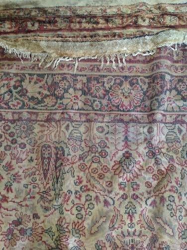 Persian Rug 12x8 - 3