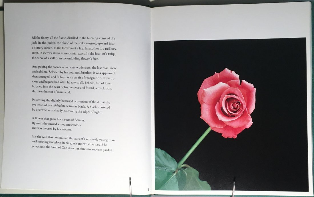 Mapplethorpe: Flowers - 4
