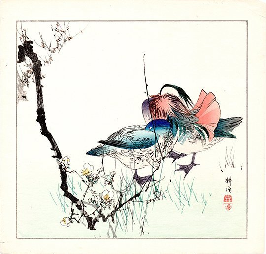 Okakura Seiko: Two Mandarin Ducks, 1910
