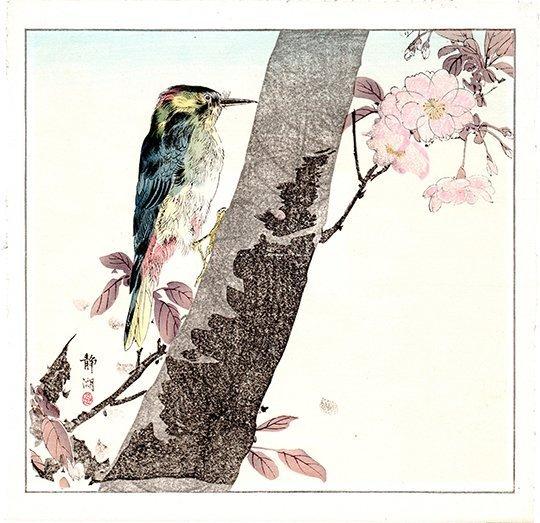 Okakura Seiko: Wood Pecker, 1910