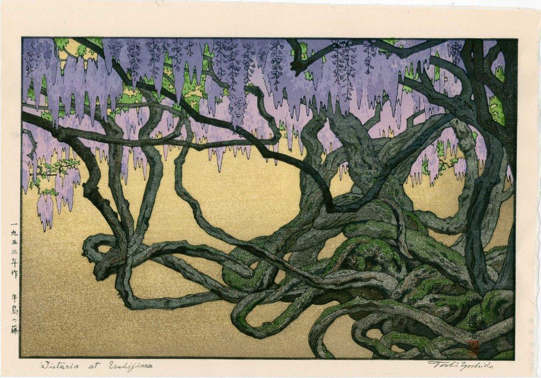 Toshi Yoshida: Wisteria at Ushijima, 1953