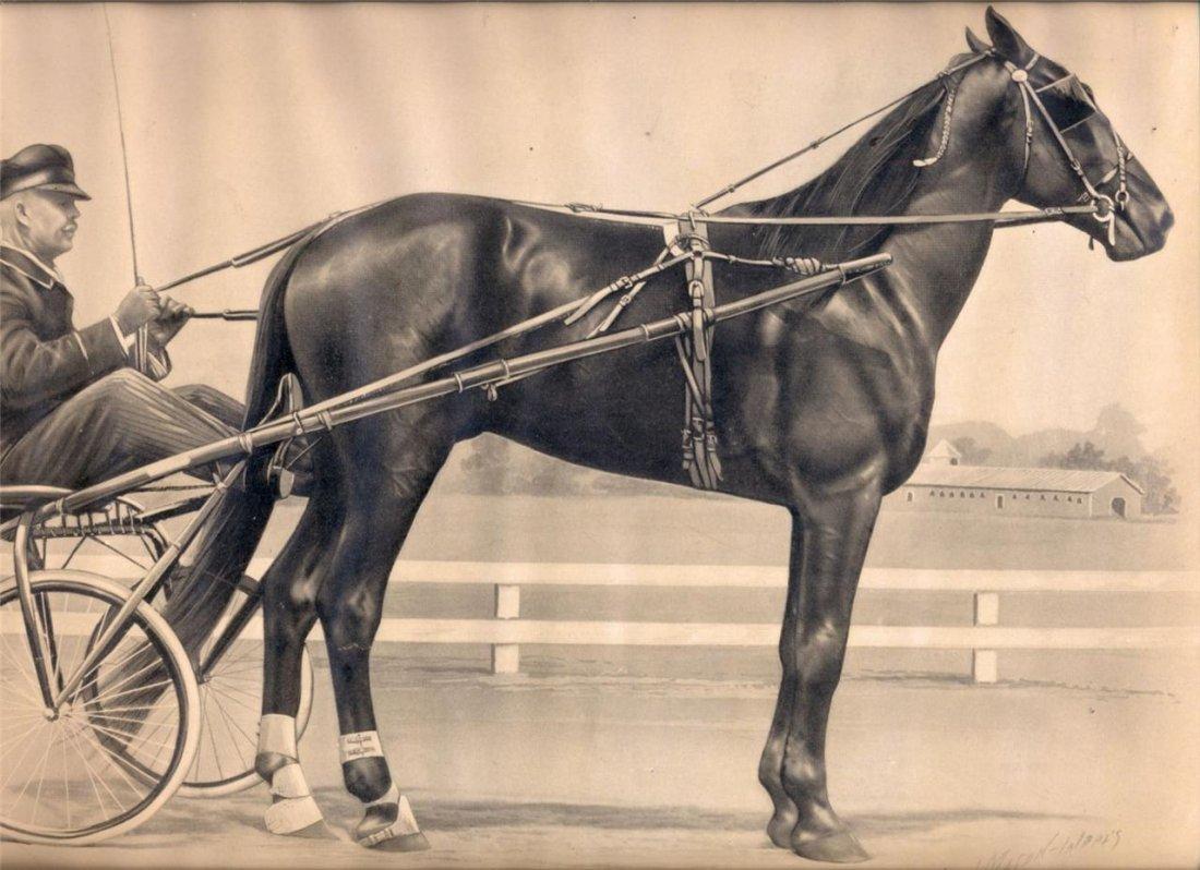 Champion Harness Race Horse Print, 1908