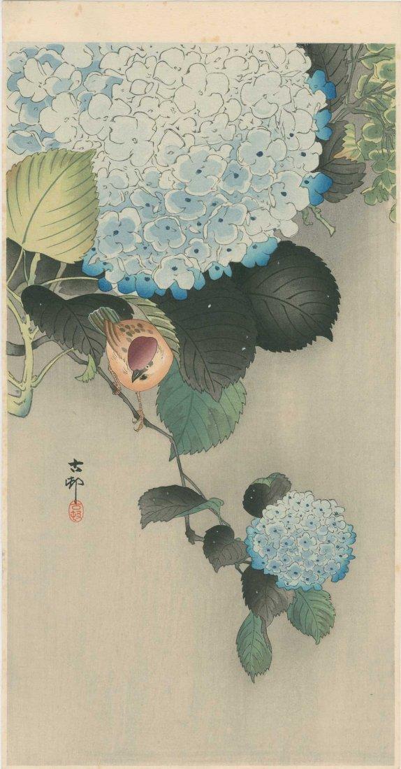 Ohara Koson: Sparrow and Hydrangea, 1930