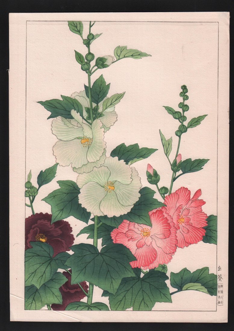 Nishimura Hodo: Hollyhock Flowers,1930's