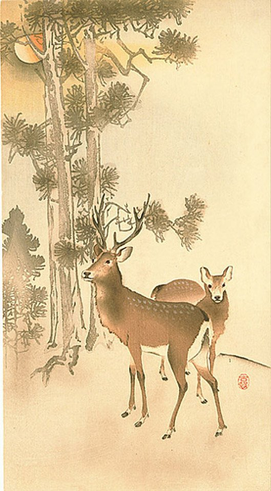 Ohara Koson: Deer Next to Pine Trees, 1910's