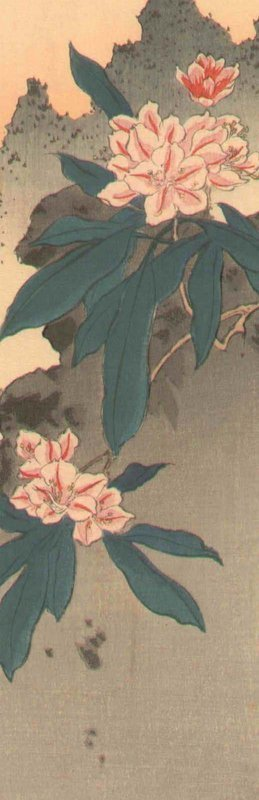 Shoda Koho: Flowers, 1910 - 2
