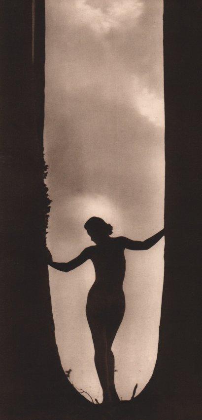 Walter Bird: Silhouette