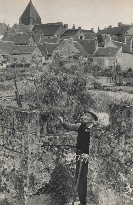 Cartier-Bresson: Tending the Garden