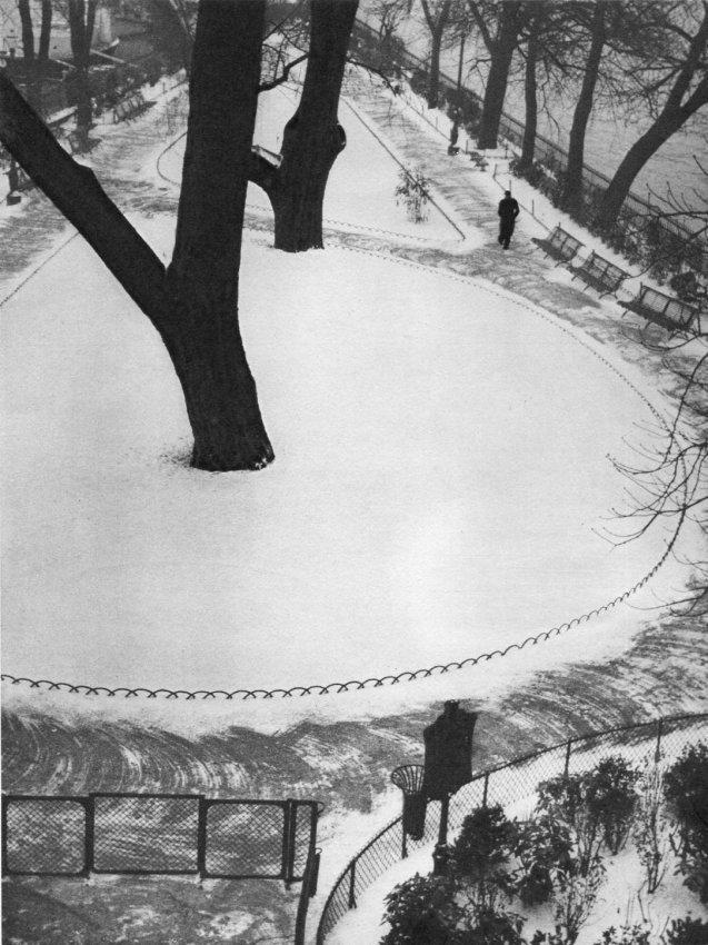 Andre Kertesz: Snowy Park