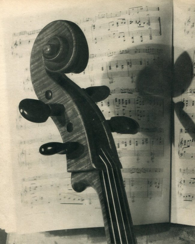 Andre Vigneau: Bass
