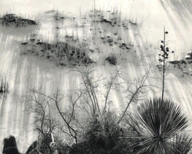 Brett Weston: White Sands, New Mexico