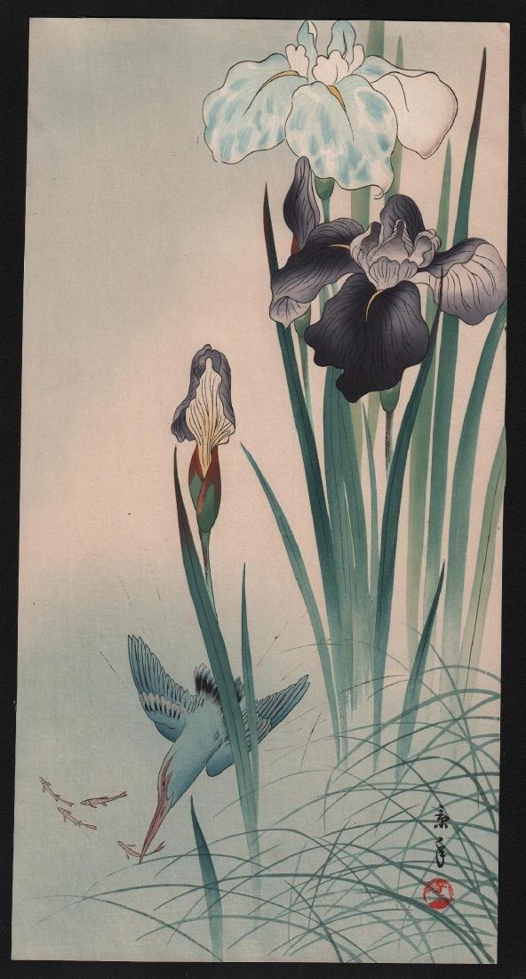Imao Keinen: Kingfisher