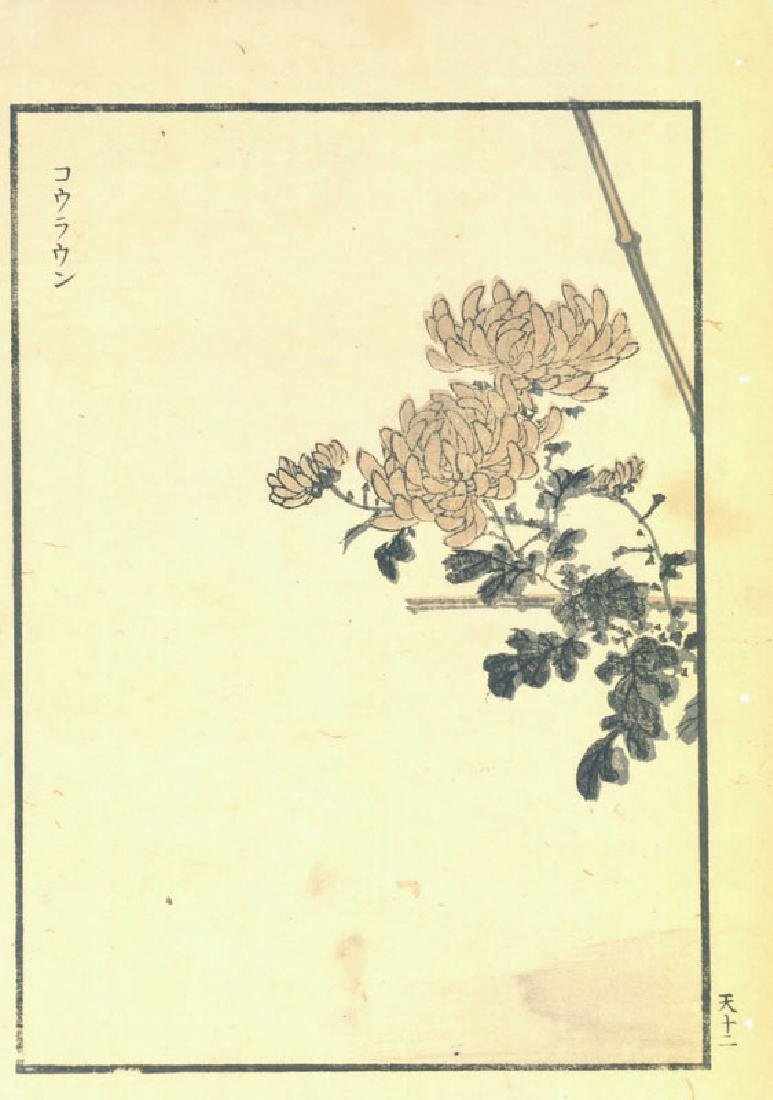 Kono Bairei: Chrysanthemum Branch