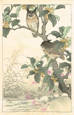 Kono Bairei: Owls