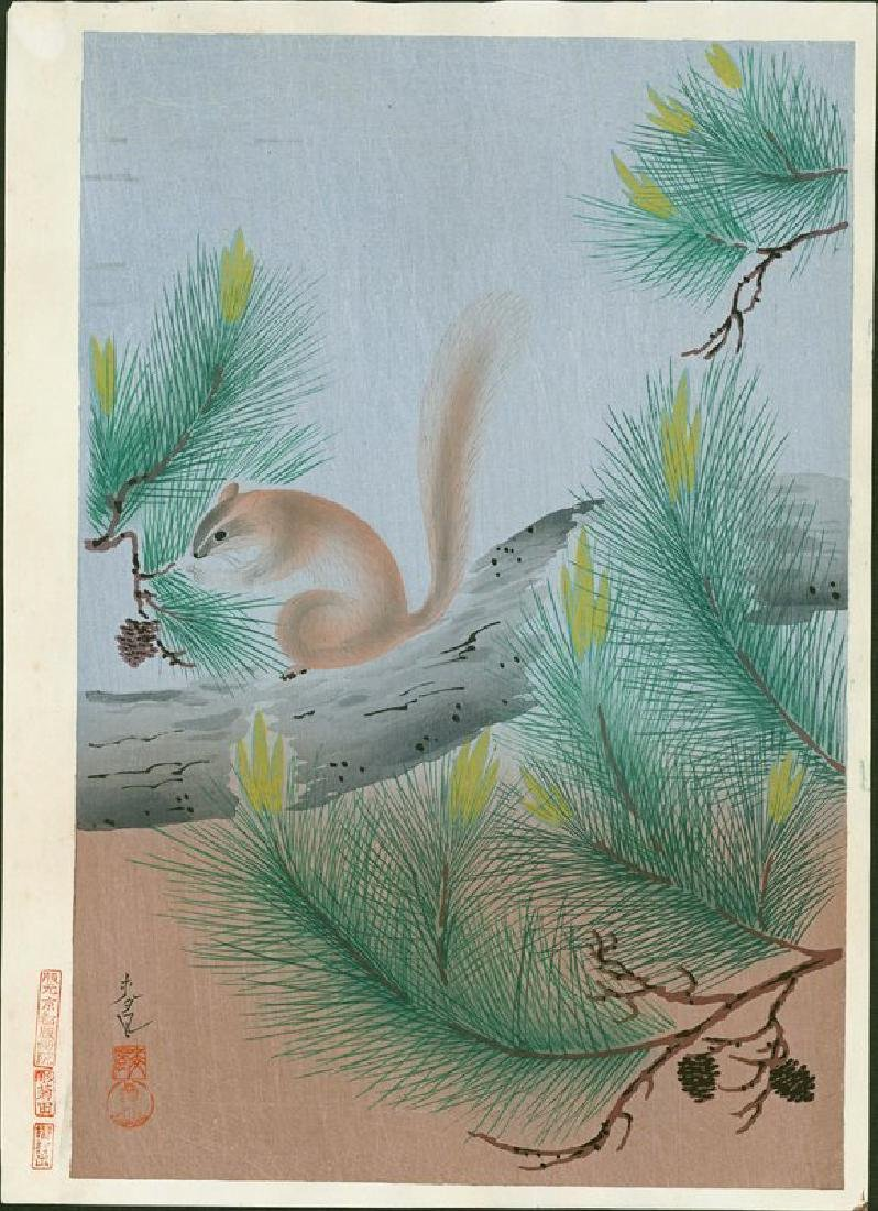 Ohno Bakufu: Squirrel in a Pine Tree