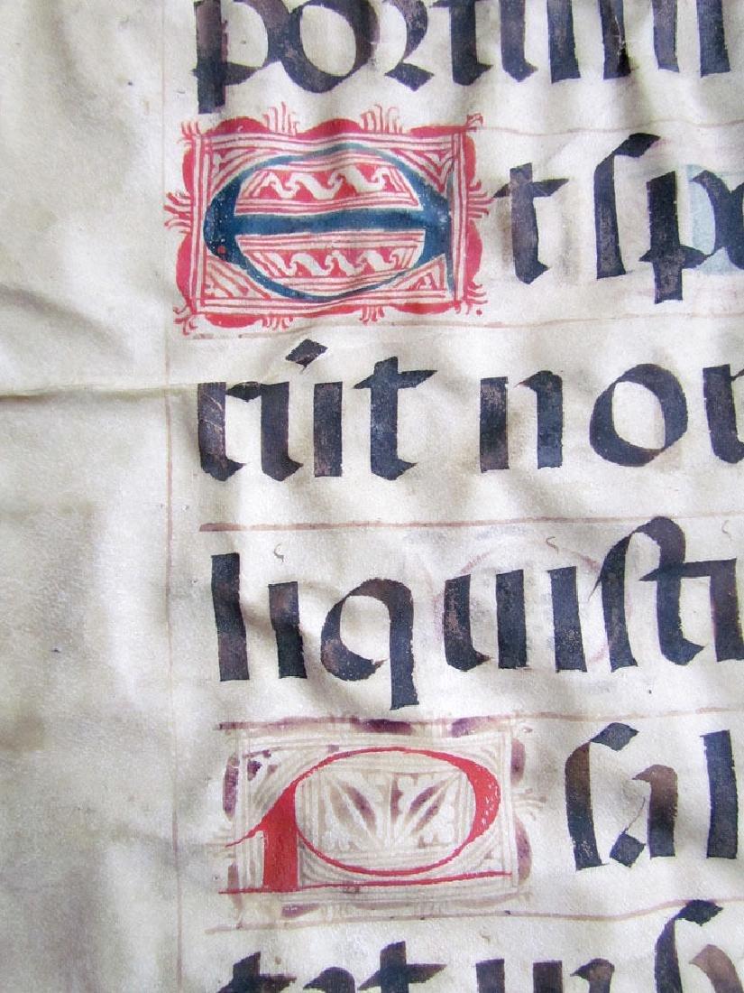 16th Century Hand Written Vellum Leaf - 8