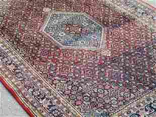 Superb Quality Persian Bijar Rug 6x10